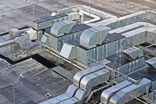 střecha haly.jpg
